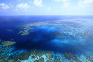 景気好調の沖縄で「仕事がない」のは本当か?